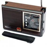 Радиоприемник GOLON RX-9933UAR черно-коричневый