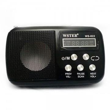 Радиоприемник WSTER WS-822 черный в Одессе