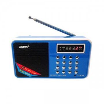 Радиоприемник WSTER WS-968 в Одессе