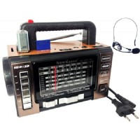 Радиоприемник New Kanon KN-190 REC-MIC